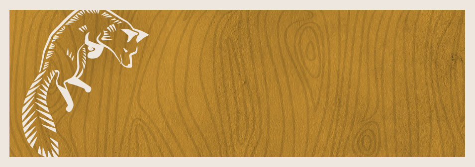 "Jordan Danger has a name befitting a female superhero, and she will use her powers of social marketing for good and not evil, I promise!  If you ever wanted to ""be saved"" from having to figure out how social media works, she's the super-heroine for you!      Cathryn Michon,  author of the bestselling ""The Grrl Genius Guide to Life"" and Writer/Director of the upcoming romantic comedy feature film ""Muffin Top: A Love Story"""