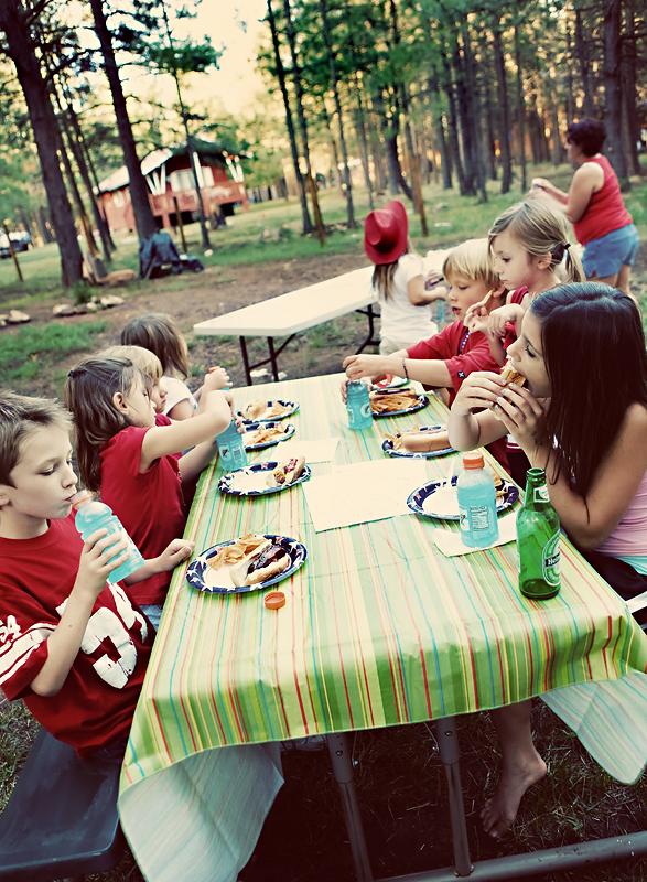 95-picnic