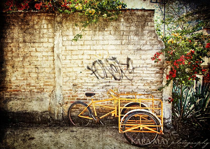 web-mex-bike