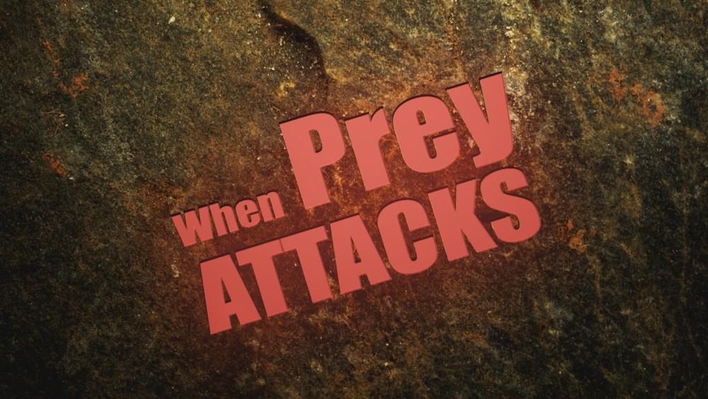 When Prey Attacks.jpg