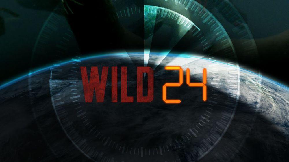 Wild24 title.jpg