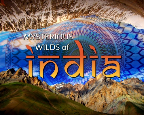 Mysterious Wilds of India - Title Graphic 20160523.JPG