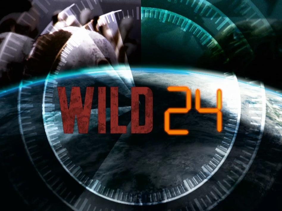 Wild24.jpg
