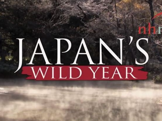 Japans_wild_year_opt2.JPG