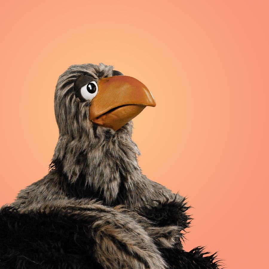 EMICO   El águila Emico toma muy en serio el ser la anfitriona del noticiero, el reportar asuntos actuales en el mundo animal. A menudo está frustrada por sus reporteros, quienes no pueden mantener el profesionalismo que ella espera.