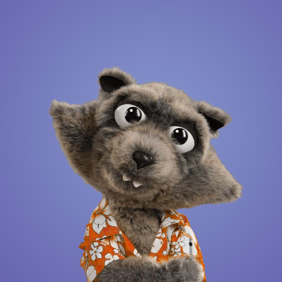 ROCKY   Rocky el mapache es un hermoso y pequeño diablillo, quien como reportero es veloz aunque no esté bien preparado. Es muy astuto y un bromista muy pillo con expresiones cómicas.
