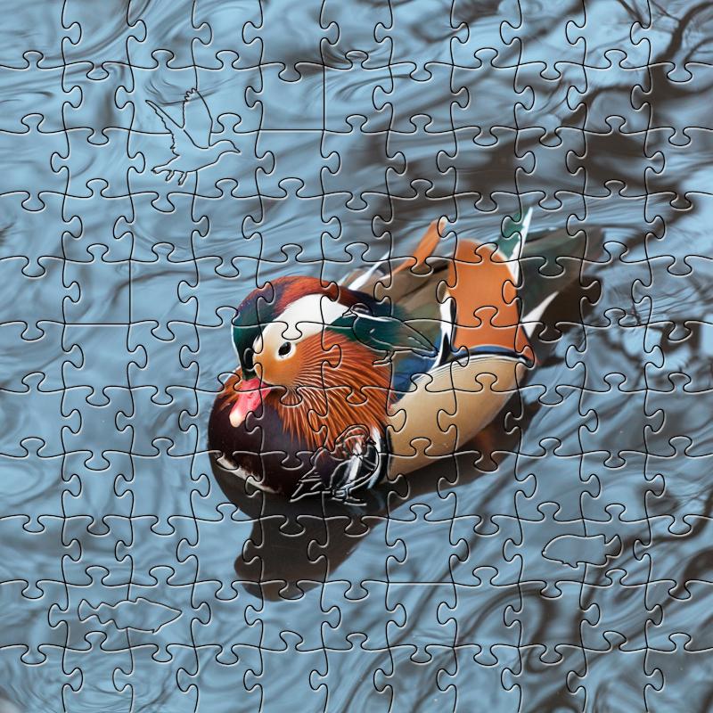 Zen Puzzle, Mandarin Duck Small