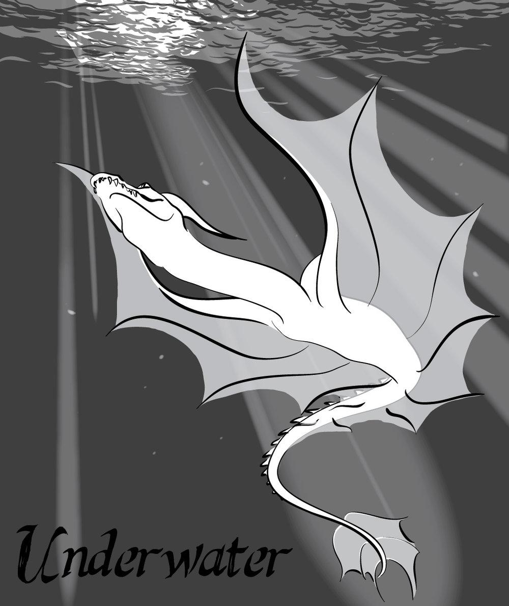 4-Underwater_lines.jpg