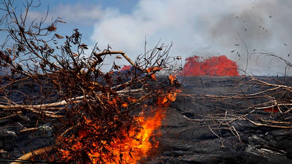 Lava burns a tree in the Leilani Estates subdivision near Pahoa, Hawaii, Tuesday, May 22, 2018. Authorities were racing Tuesday to close off production wells at a geothermal plant threatened by a lava flow from Kilauea volcano on Hawaii's Big Island.
