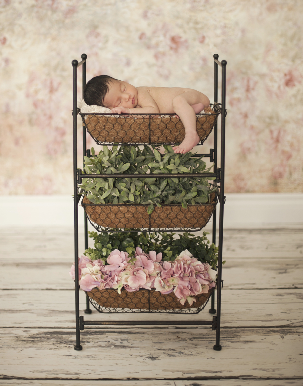 Sono Photography, Baby, New Born Photography, Portrait Studio, Flowers, Baby Garden
