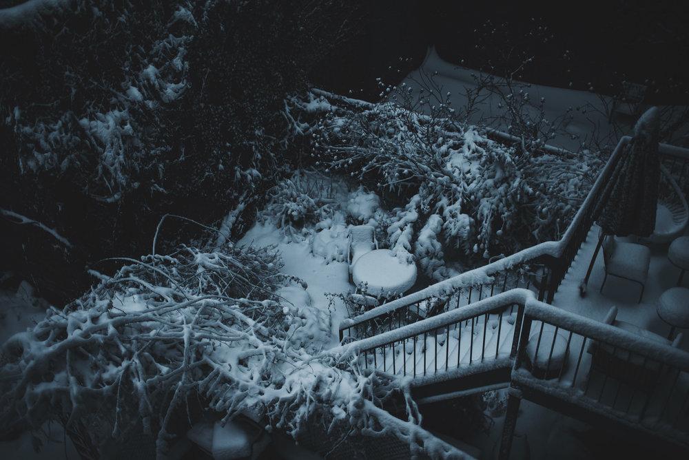 snow-124.jpg