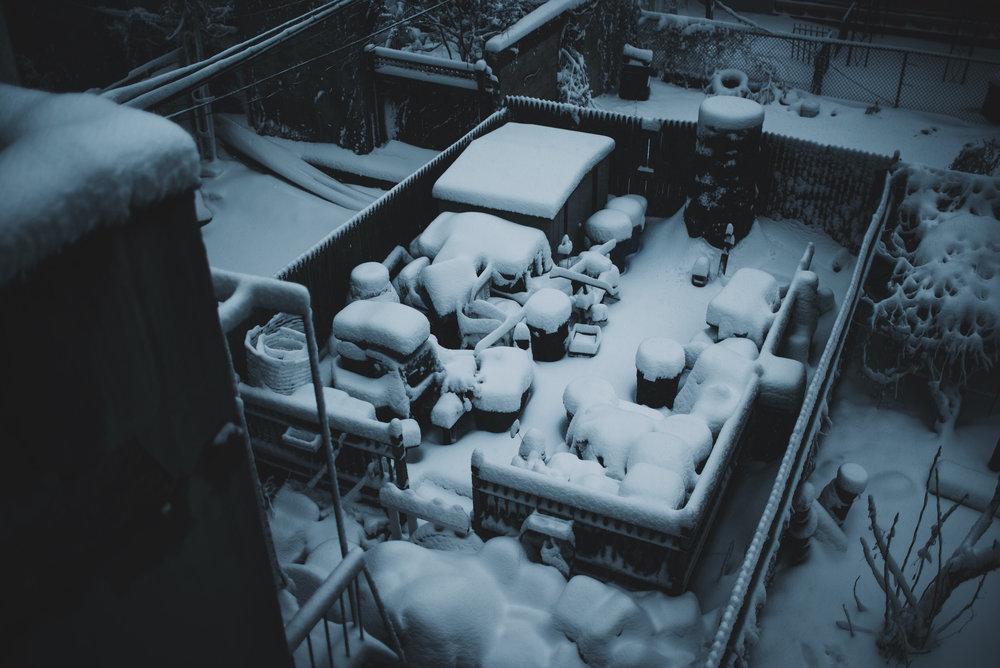snow-127.jpg