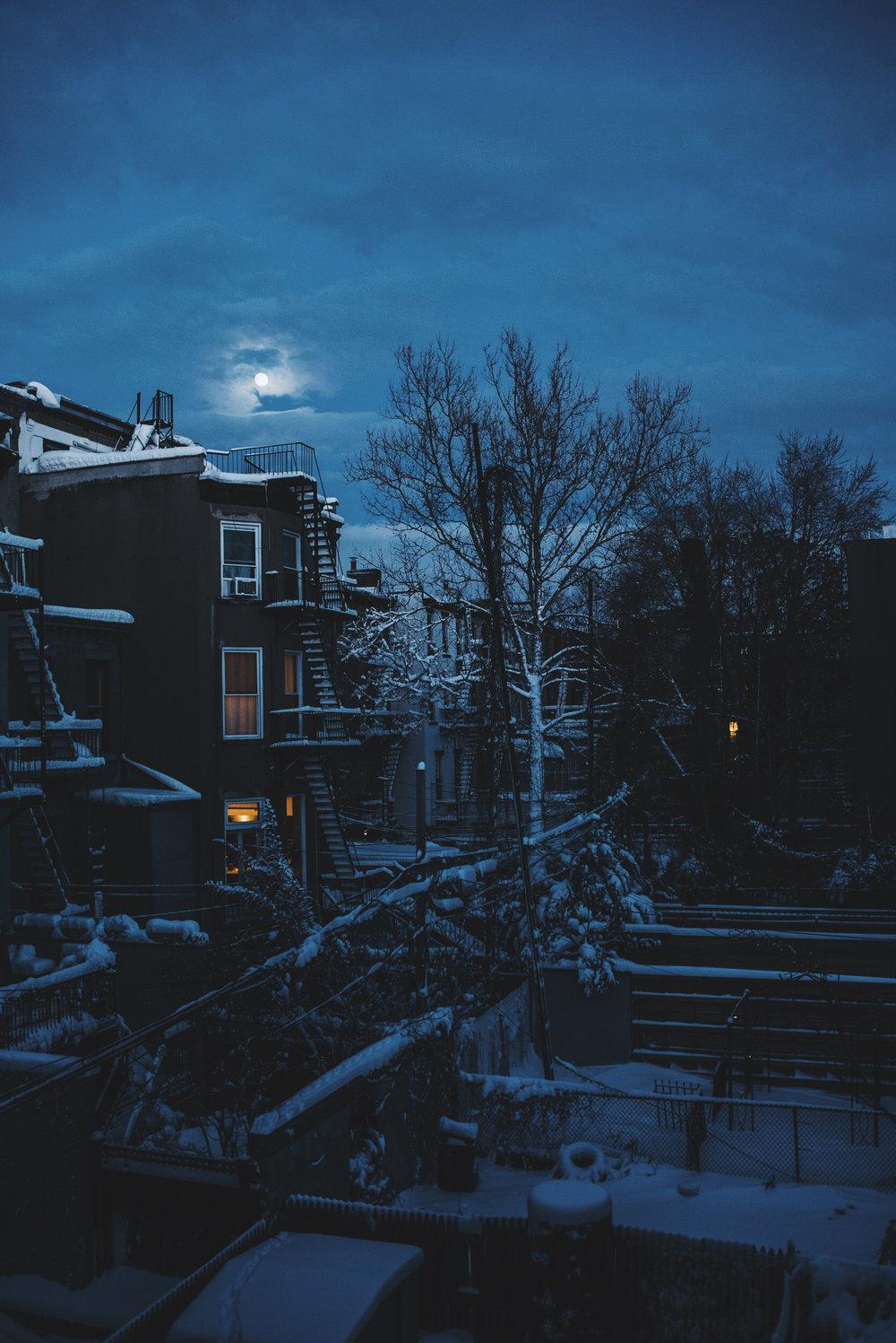 snow-131.jpg