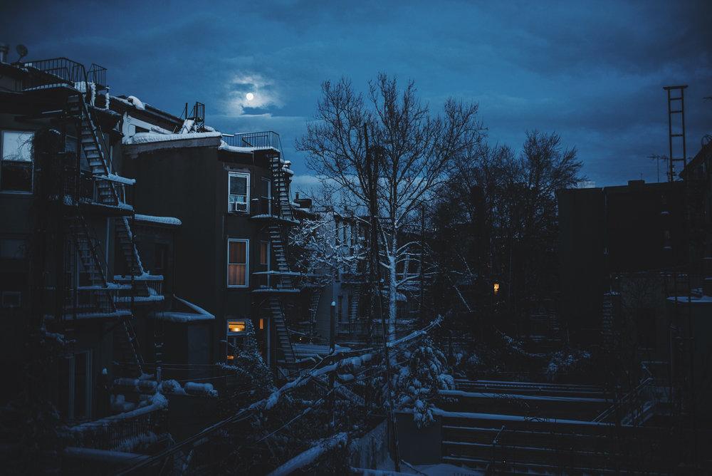 snow-132.jpg