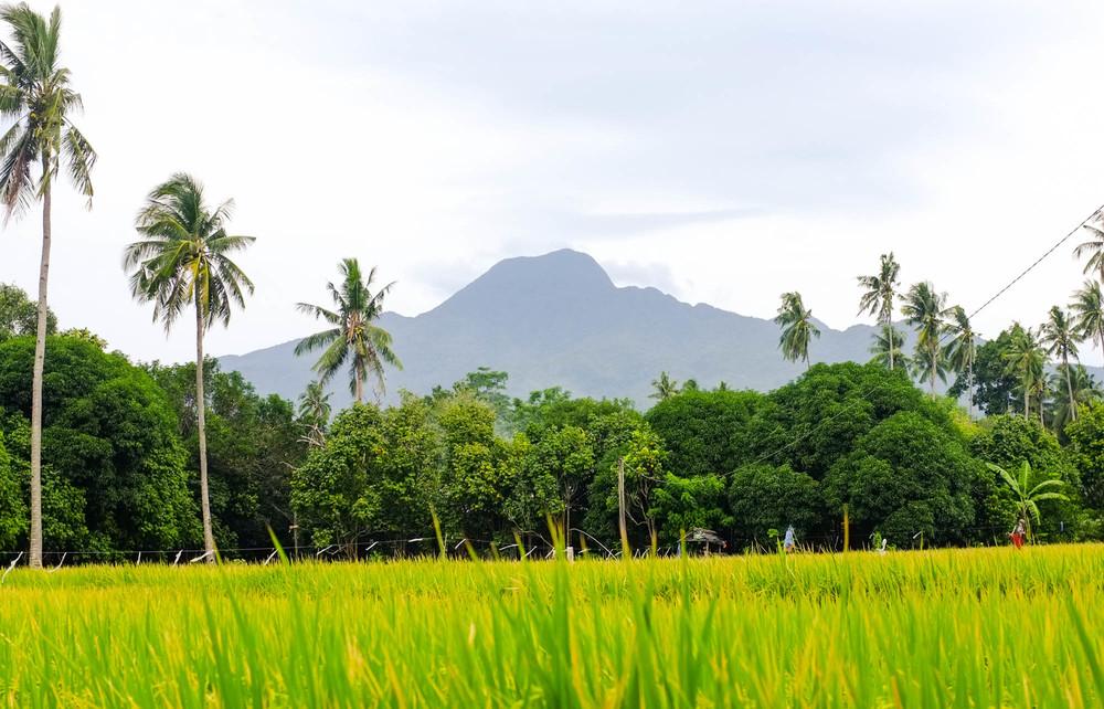 Mount Mambajao