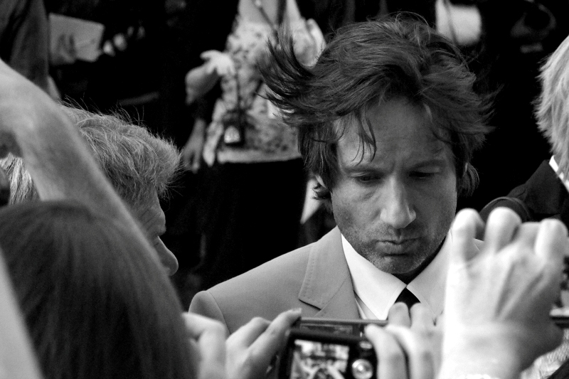 That Hair.... we may never see its like again (alternatively.... refer the journal for Tropic Thunder, where we saw its like). David Duchovy at the premiere of The X-Files : I Want to Believe.