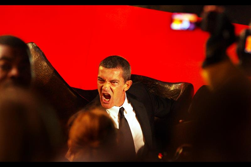 Antonio Banderas is also rarely mistaken for shy.