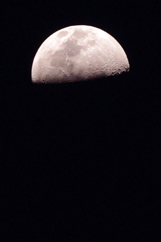 That's the Moon, not Mars. My lens isn't THAT powerful (and the red tinge is courtesy of a slight tint in photoshop, not pollution or global warming)