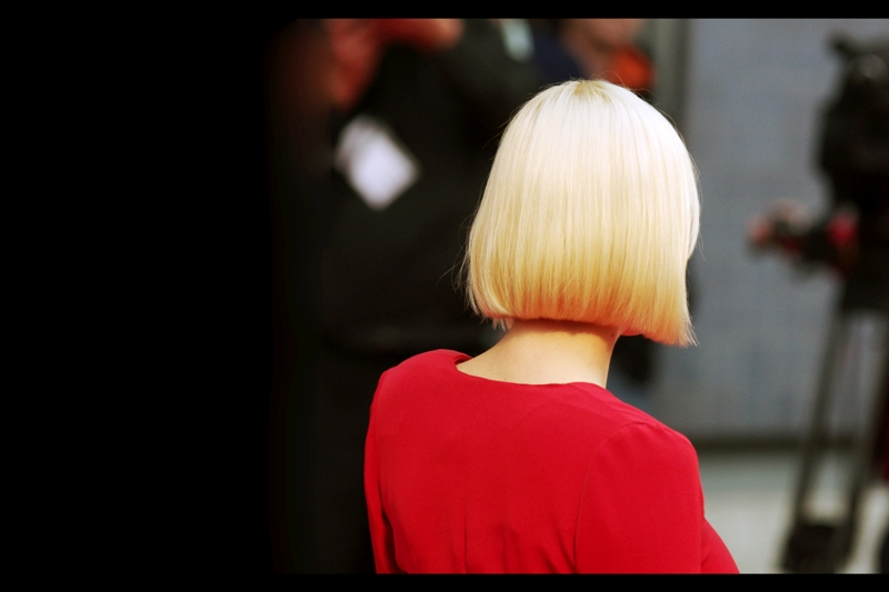 This is the back of the head of Actress Anna Faris, who stars in this movie, as well as providing a voice for 'Cloudy With A Chance Of Meatballs' which I watched in German and thus didn't get to hear her perform in. Sadly, Megan Fox (who plays herself in The Dictator) did not attend the premiere