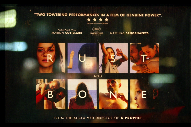"'Rust and Bone' and 'Ginger and Rosa' on the same day? Well, call me ""Excited and Right Here"""
