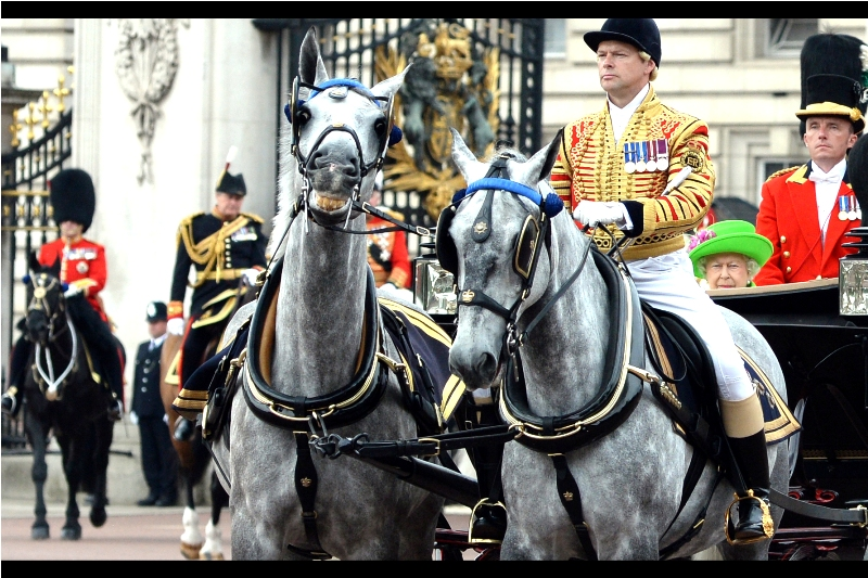 It's a horse! and another horse! And the Queen wearing (subtle) nuclear green! at Trooping The Colour 2016