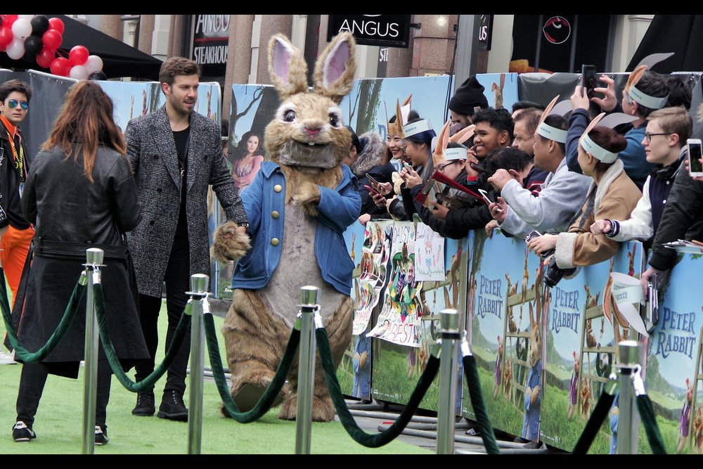 """I can't see a thing in this. And you're certain you've dressed me up as a stormtrooper?""  - It's Peter Rabbit! And either Domhnall Gleeson is about 3x bigger than the average human being, or this is a larger-than-lifesize Peter Rabbit."