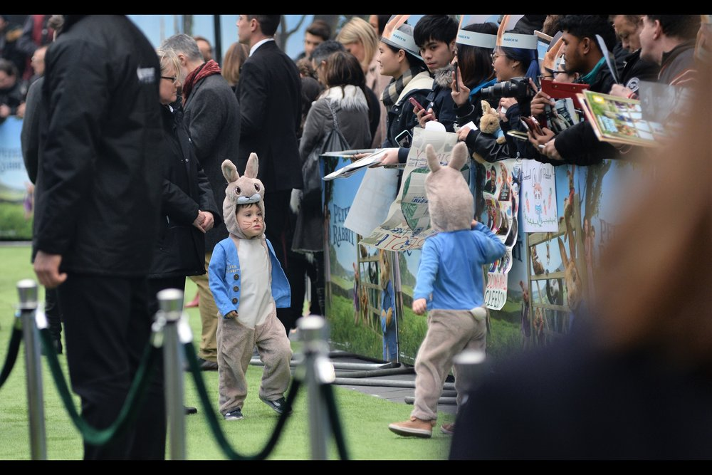 """Mom said you weren't allowed to sign autographs as Peter Rabbit. The lawyers told her and she told you and now I'm going to tell her...."""