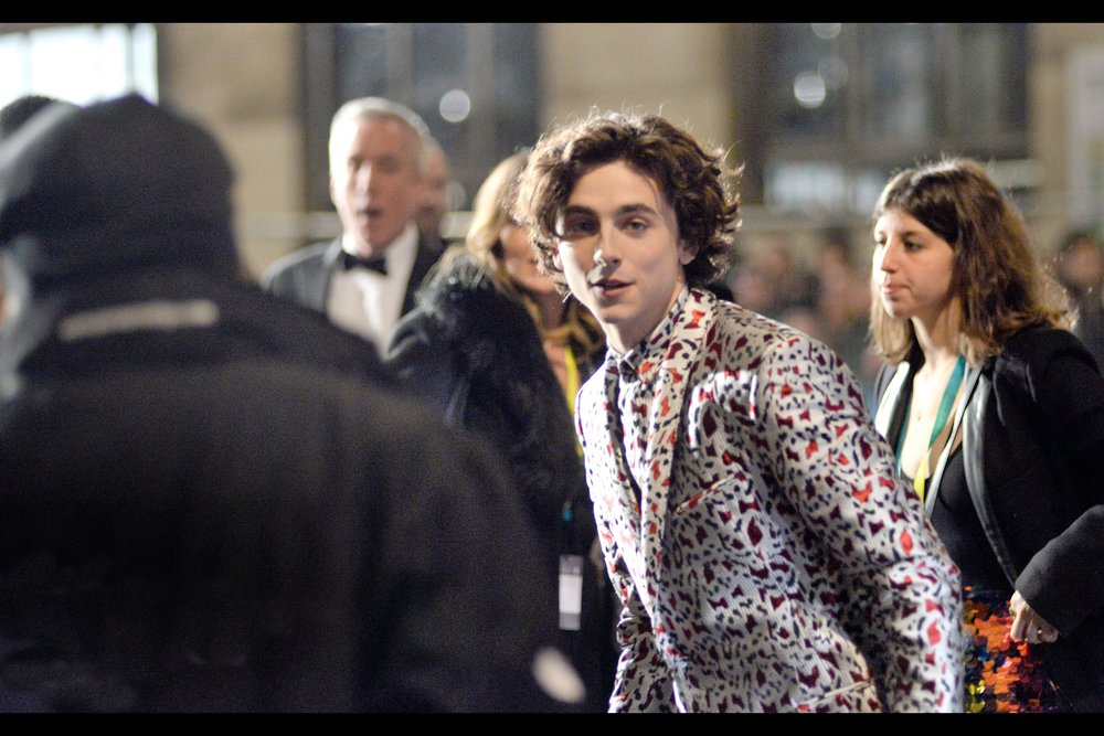 Forget every other person you were here to see - if you're under the age of 30 (50?) and female (and not necessarily female), you too would have screamed loudest for Timothée Chalamet - most recently in the movie    'Beautiful Boy' whose BFI London Film Festival attendance    resulted in pandemonium not last seen since my train company last had a service meltdown. Which happened, like, this morning, because they're f&&king incompetent a&&holes.