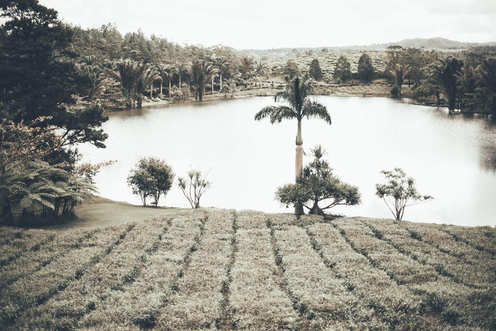 Mauritius 79.JPG