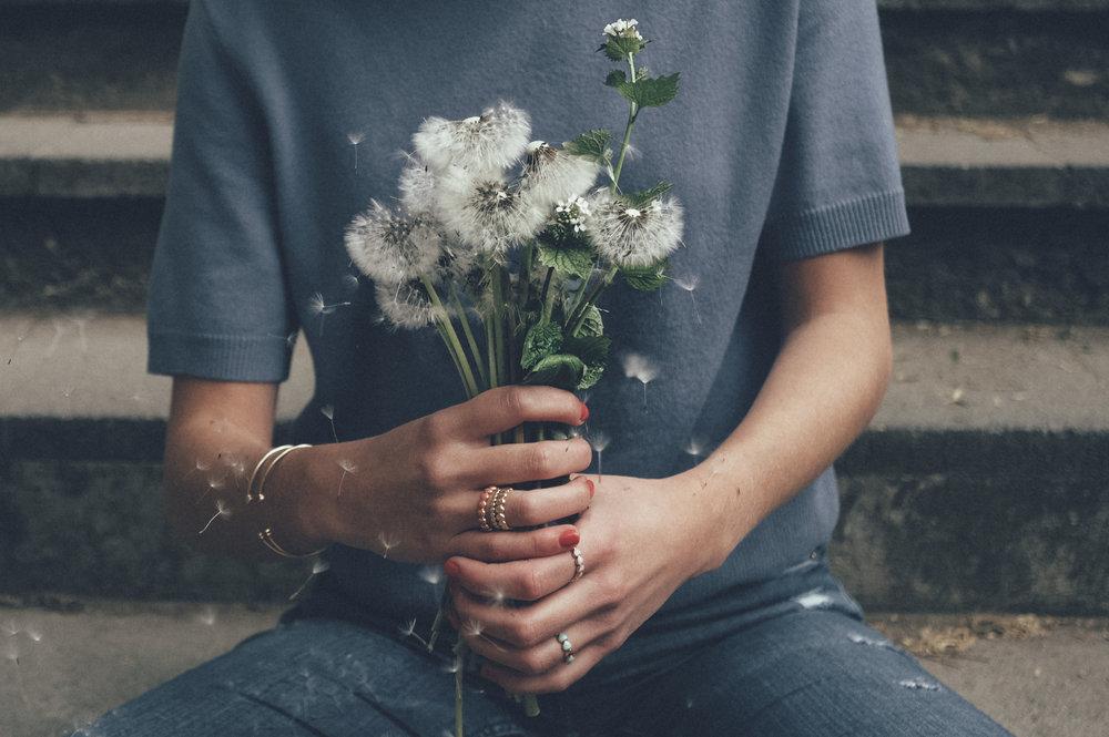 dandelion7.jpg