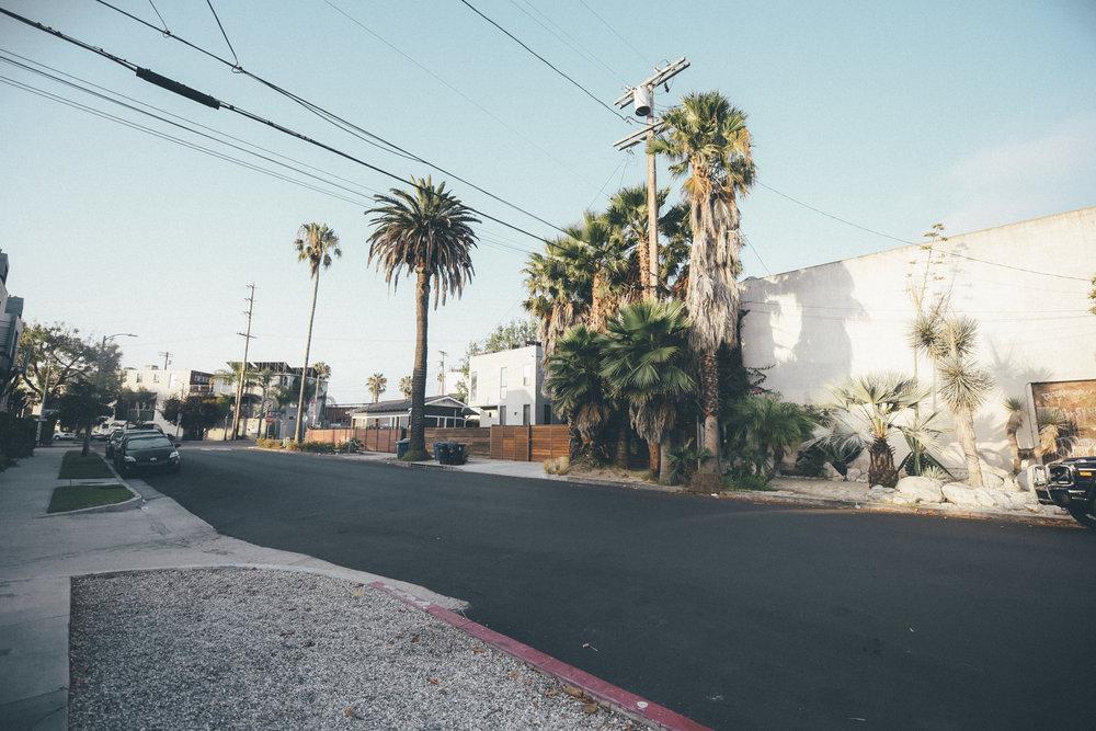 Los Angeles Trip 7.jpg