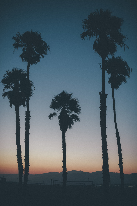 Los Angeles Trip 268.jpg
