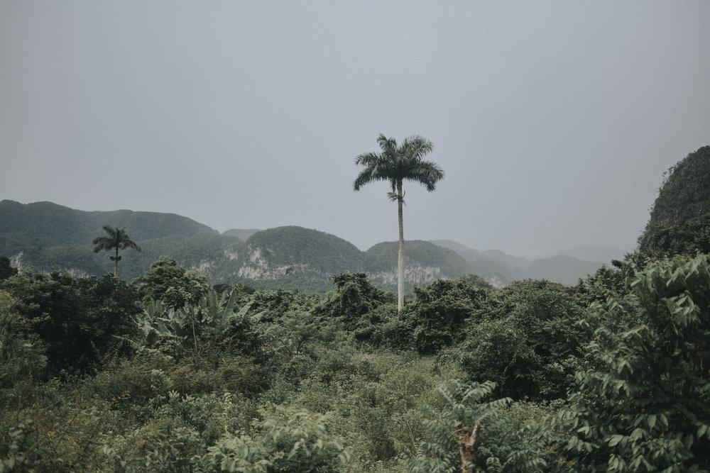 Travel Blogger Cuba Havana Spots 16.JPG