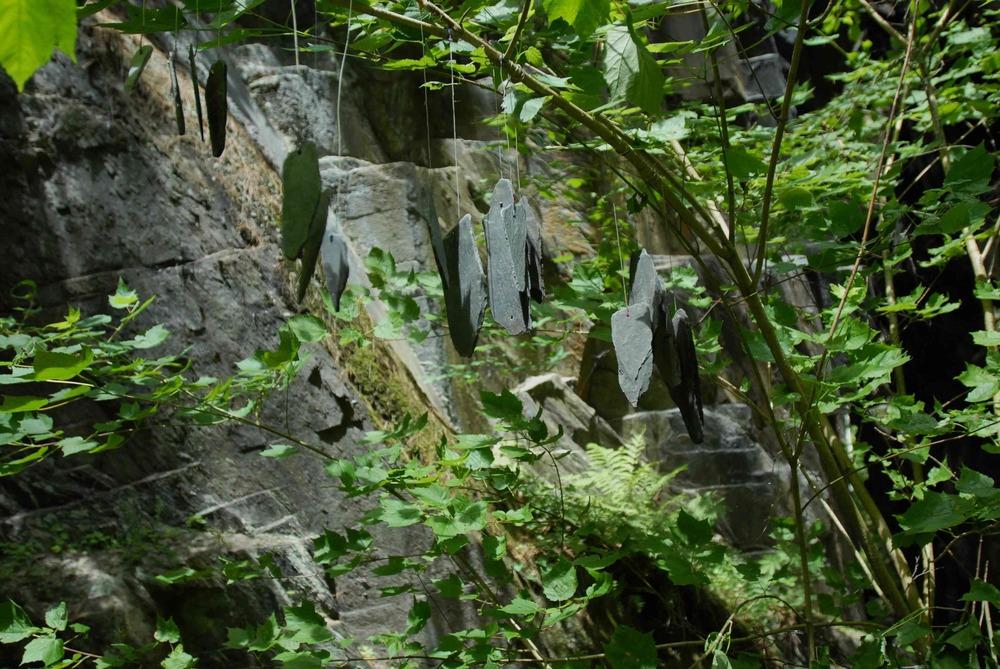 Quarry (223).jpeg