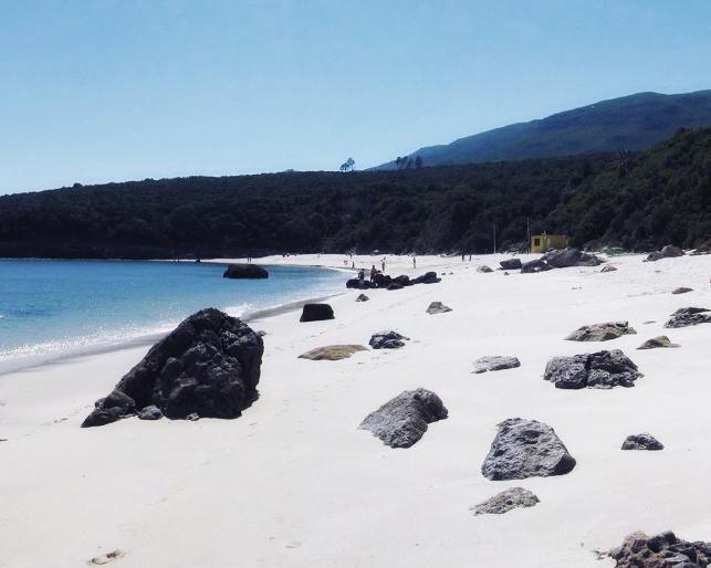 galapinho 1st beach 05 pan (0).jpg