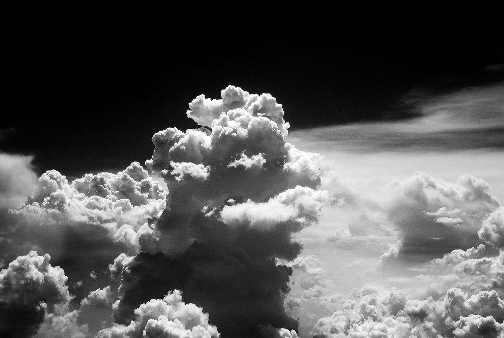 Haoran Fan_Genesis_03.jpg