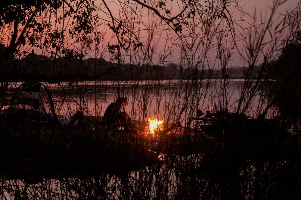 Sunrise through the reeds whilst Charlie makes the morning cup of tea on the fire.