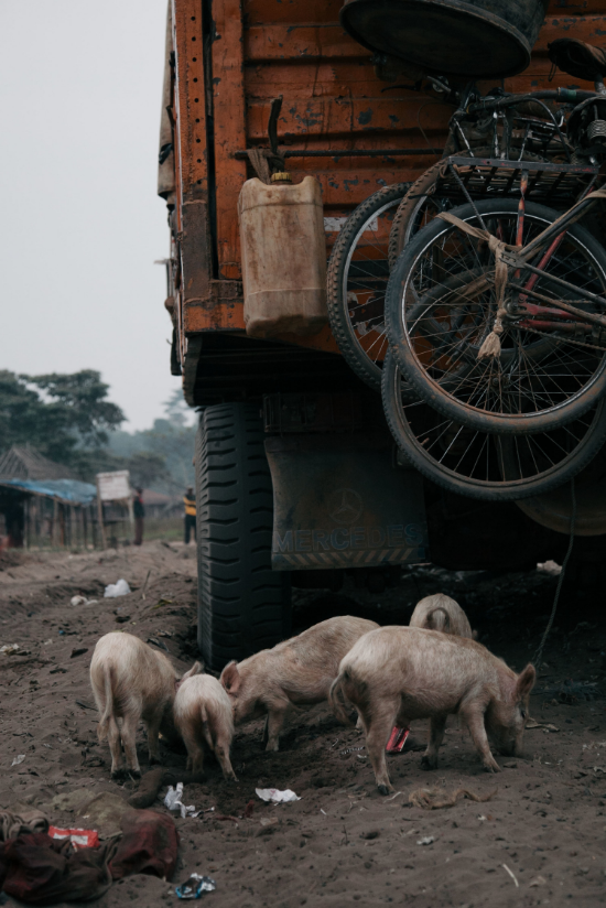 Our bicycles suffer as dusty and uncomfortable a journey as their riders.