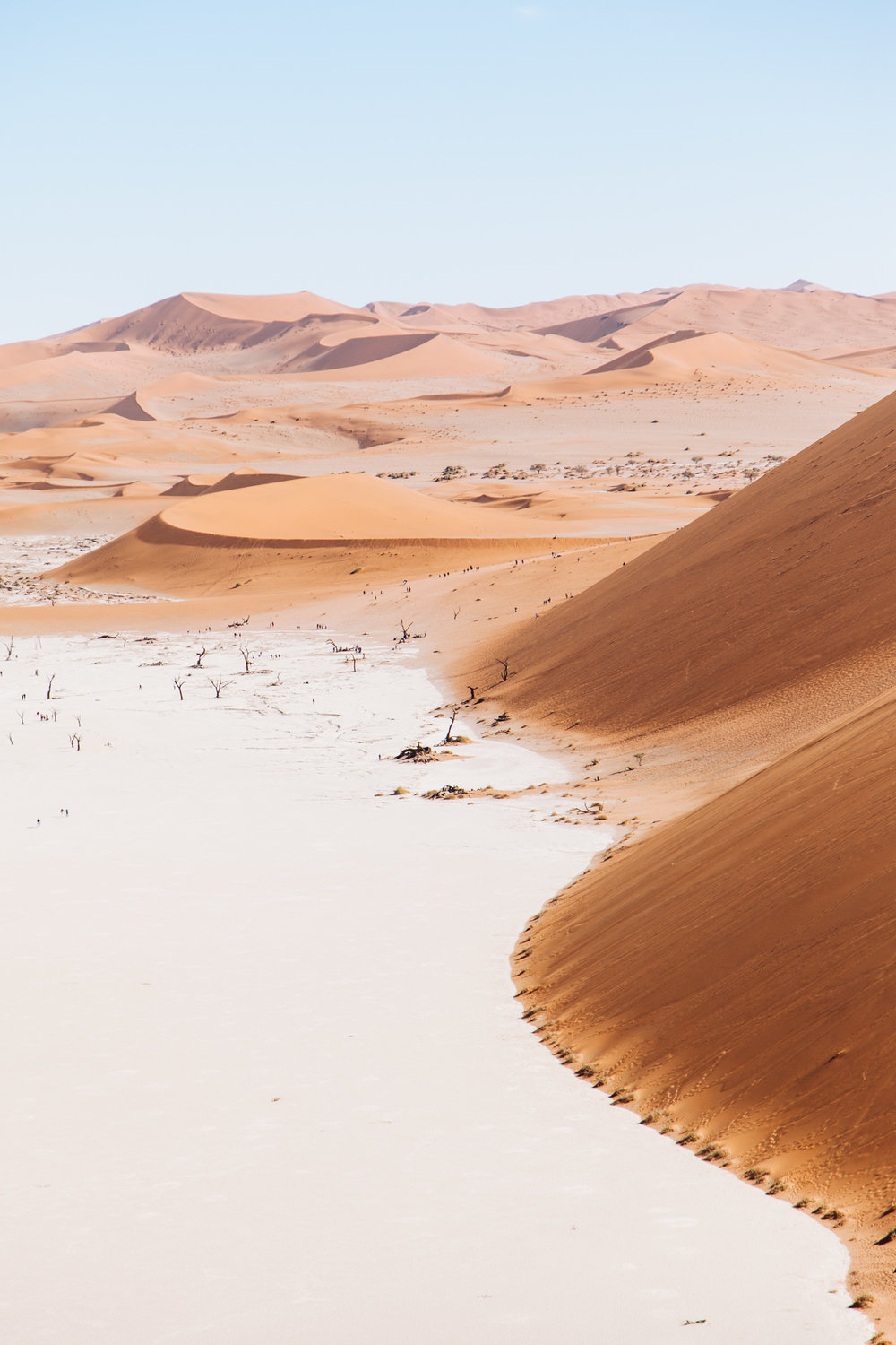 The Tsauchab River used to drain into here, nourishing desert life and even trees. But no longer. Some 900 years ago the climate dried up, and the dunes cut Dead Vlei off from the river.