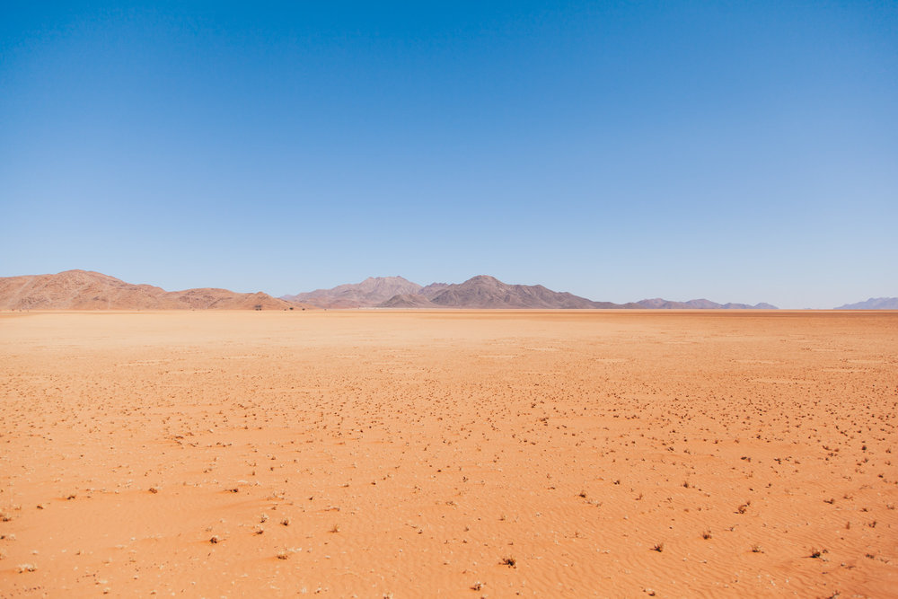 These mysterious bare circles in the sand dot the landscape. Numerous scientists have researched the circles but no one has yet been able to ultimately determine their cause or purpose. So they have become known as Fairy circles!
