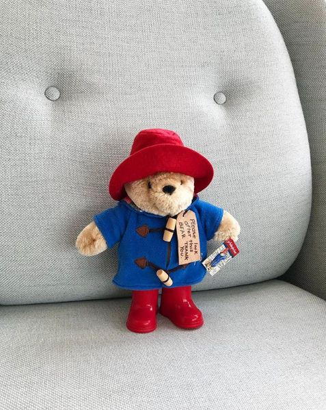 Paddington Bear - Instagram.JPG