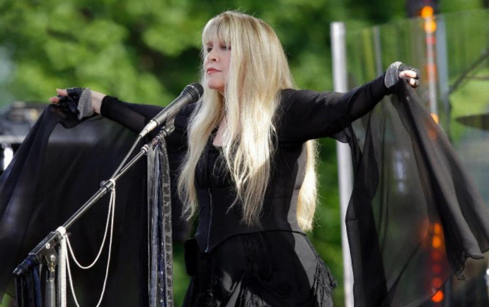 Yep. THAT Stevie Nicks.