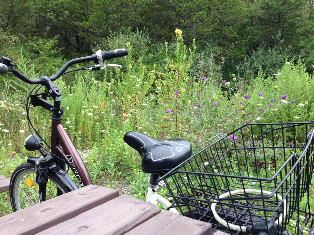 Lunch spot. Just me and my Damenfahrrad