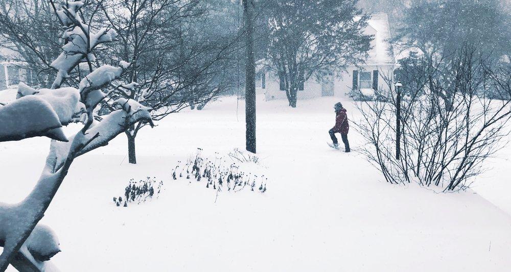 snowday - 1.jpg