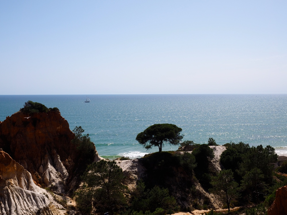 algarve-avril-2014-96.jpg