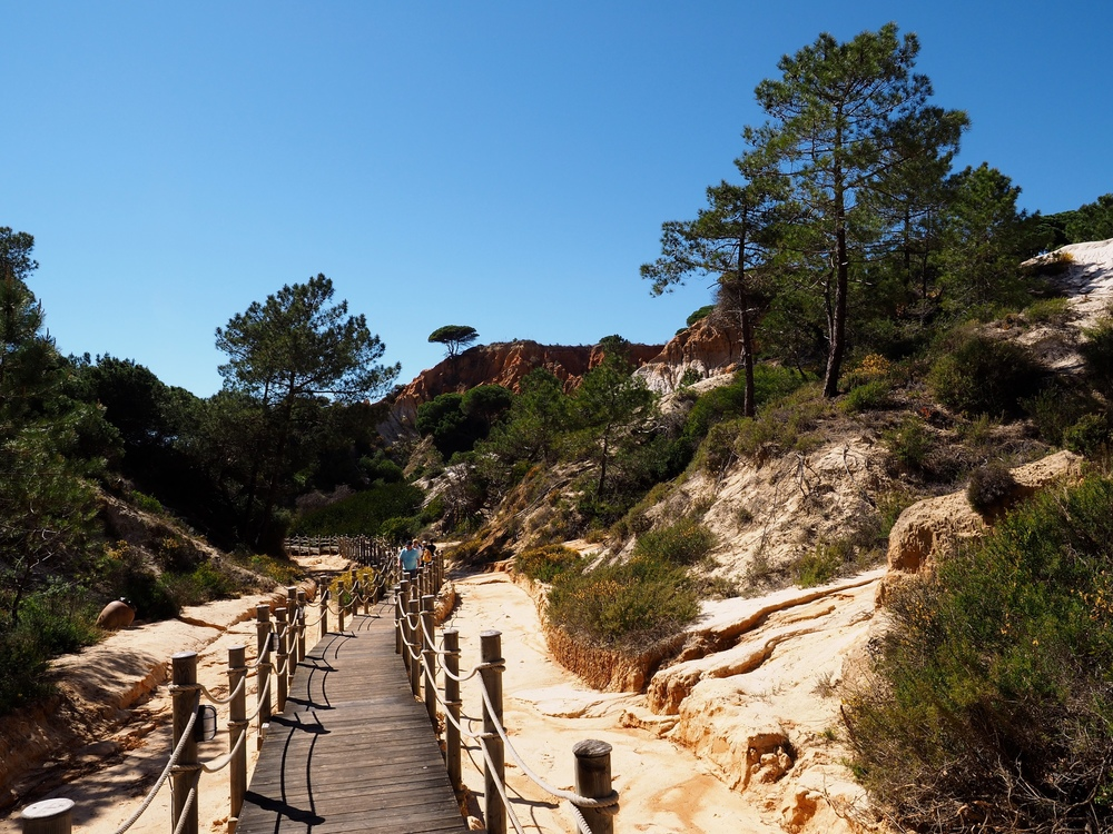 algarve-avril-2014-45.jpg