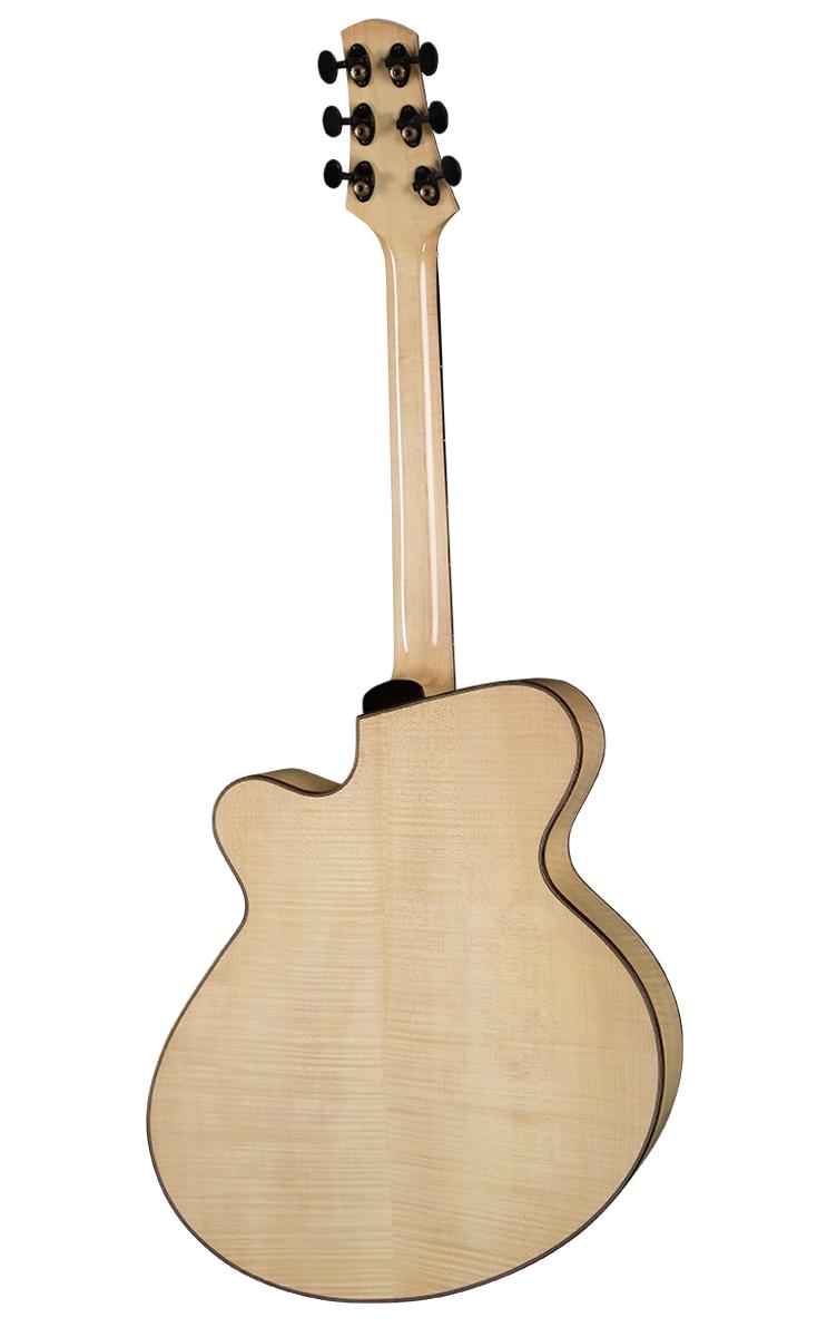 Guitar_PG2_Archtop_Back_0815.jpg