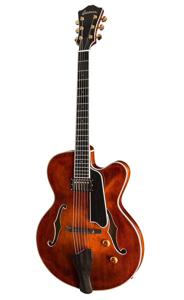 Guitar_T146SM_Thinline_Front_0815.jpg