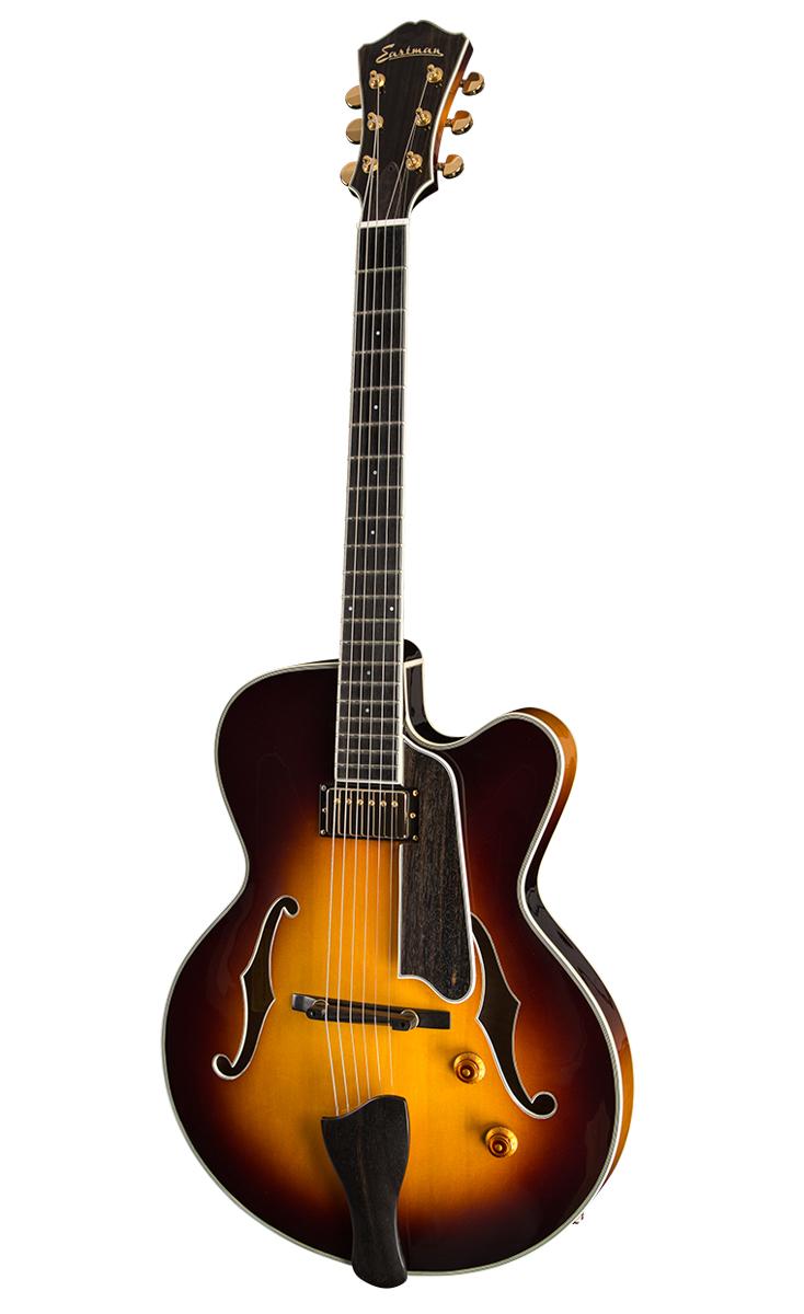 Guitar_T146SM-SB_Thinline_Front_0815.jpg