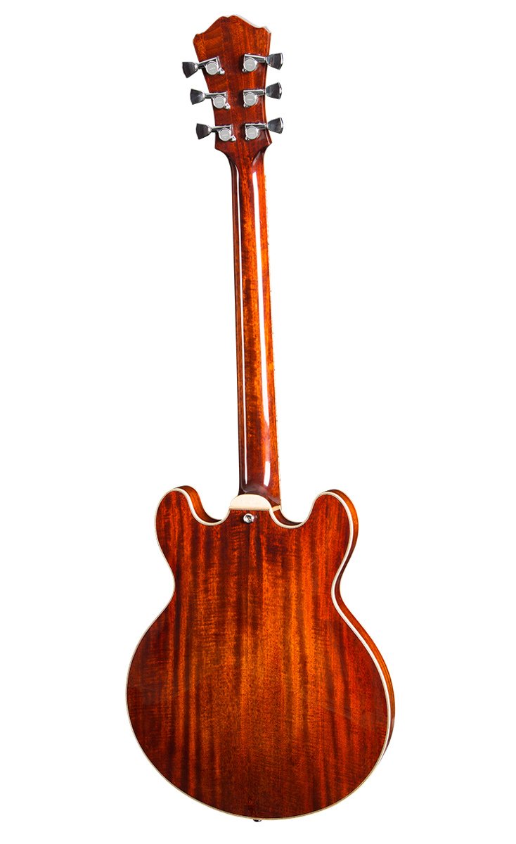 Guitar_T184MX_Thinline_Back_0815.jpg
